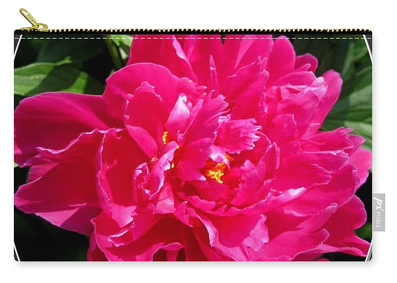 Peony Carry-all Pouch featuring the photograph Peony Named Karl Rosenfield by J McCombie