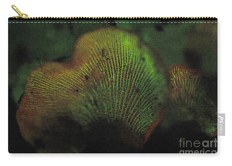 Luminescent Carry-all Pouch featuring the photograph Luminescent Mushroom Panellus Stipticus by Ted Kinsman