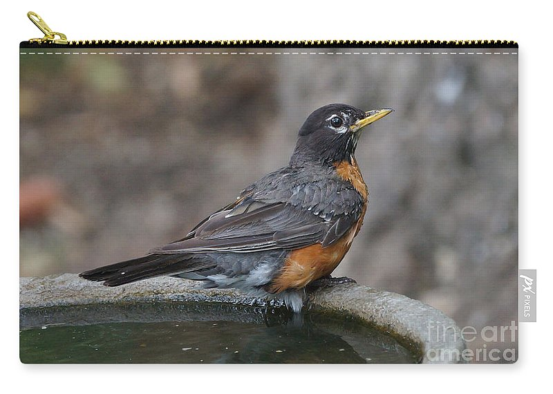 Robin Carry-all Pouch featuring the photograph Bath Time by Lori Tordsen
