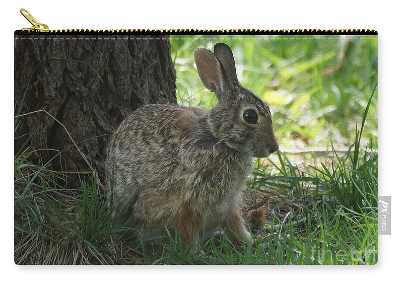Rabbit Carry-all Pouch featuring the photograph Rabbit by Lori Tordsen