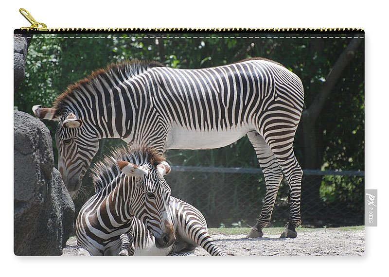 Animal Carry-all Pouch featuring the photograph Zebras by Rob Hans