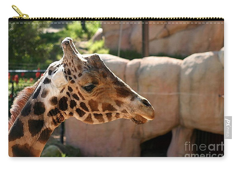 Africa Carry-all Pouch featuring the photograph Baringo Giraffe by Henrik Lehnerer