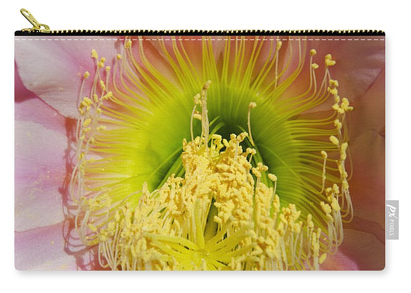 Pink Carry-all Pouch featuring the photograph Pink Cactus Flower by Jim And Emily Bush