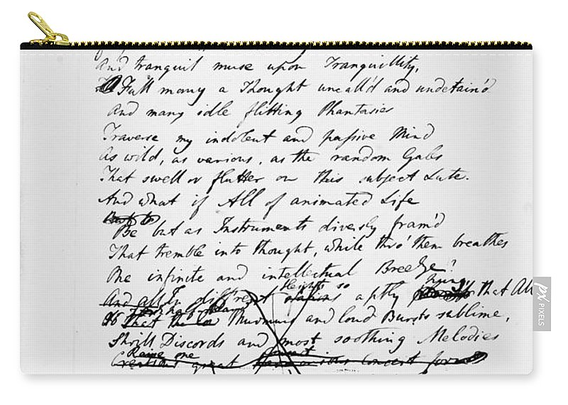 1817 Carry-all Pouch featuring the photograph Samuel Taylor Coleridge by Granger