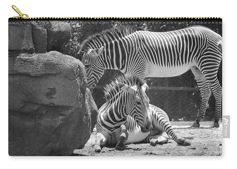 Animal Carry-all Pouch featuring the photograph Zebras In Black And White by Rob Hans