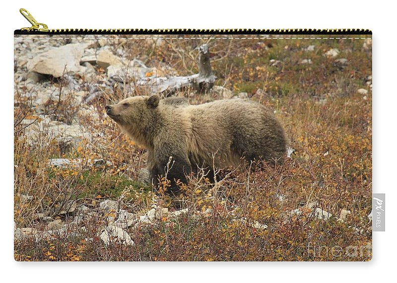 Grizzly Bear Carry-all Pouch featuring the photograph A Breath Of Fresh Air by Adam Jewell