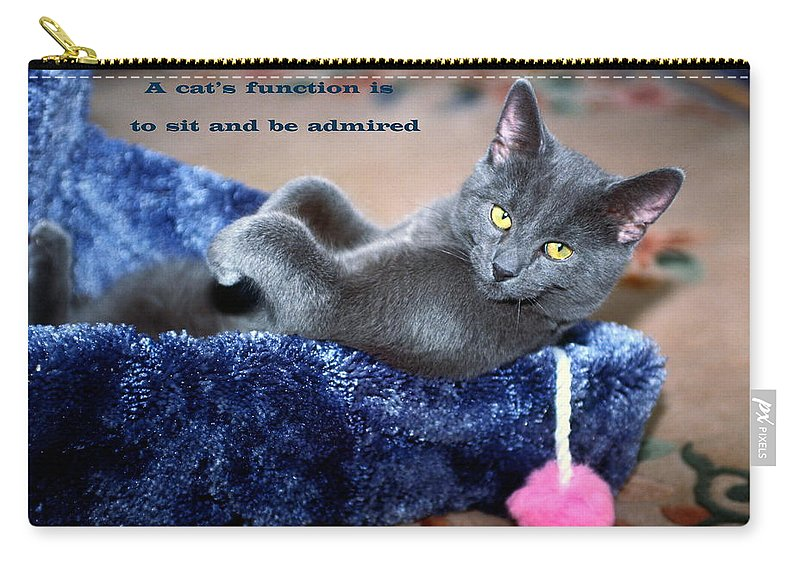 Russian Blue Kitten Lying Back Inside Scratching Post Carry-all Pouch featuring the photograph A Cats Function by Sally Weigand