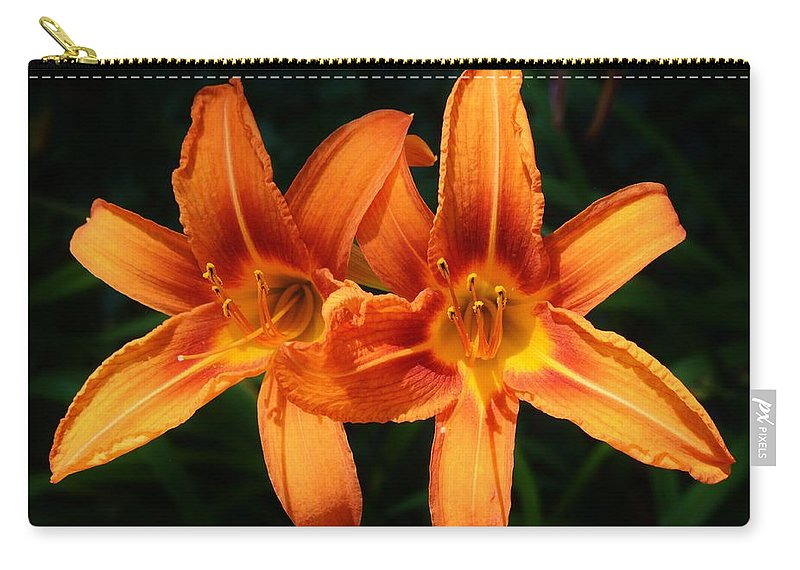 Background Carry-all Pouch featuring the photograph A Couple Of Beauties by William Bartholomew