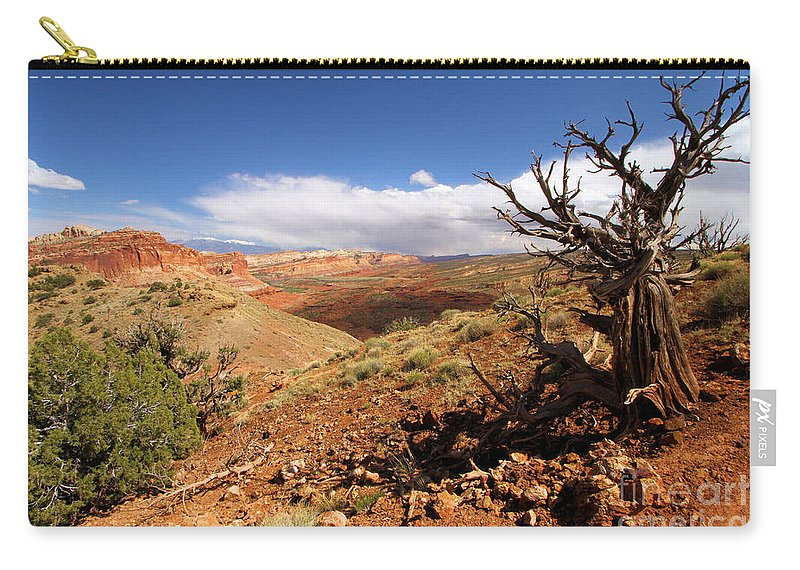 Capitol Reef National Park Carry-all Pouch featuring the photograph A Hard Life by Adam Jewell