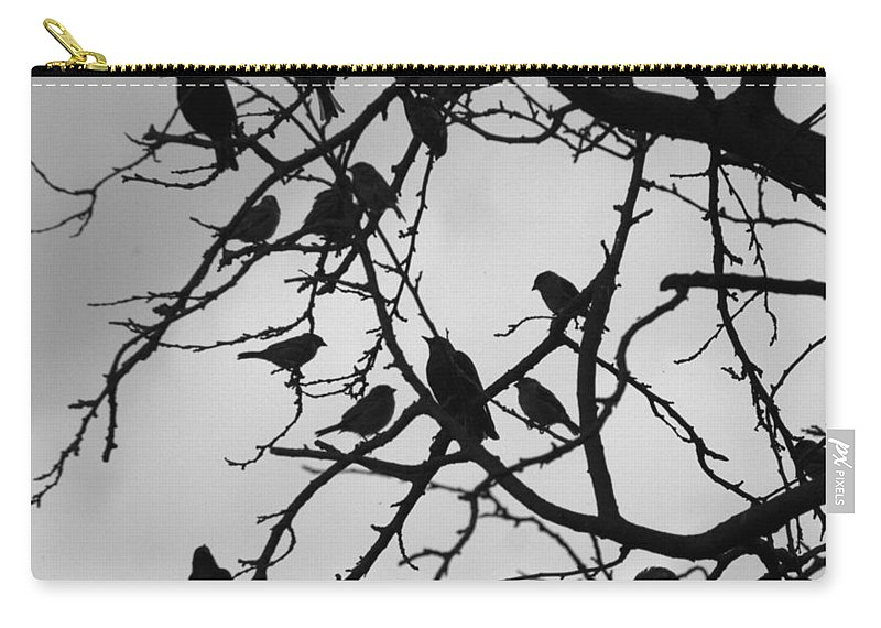Starling Carry-all Pouch featuring the photograph A Hitchcock Moment by Chris Day