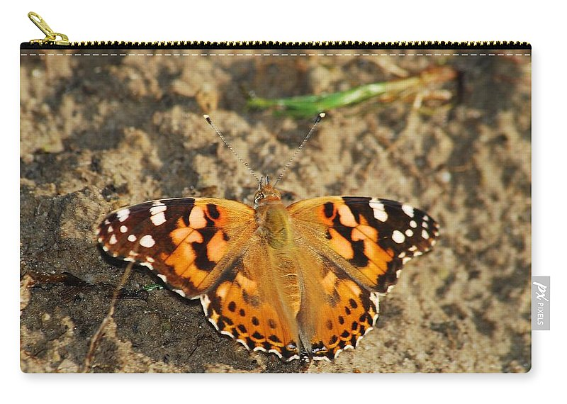 Antenna Carry-all Pouch featuring the photograph A Painted Lady Looking For Sex 8619 3369 by Michael Peychich