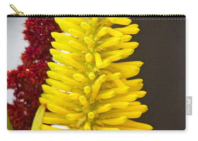 Yellow Carry-all Pouch featuring the photograph A Pair Of Yellow And Red by Douglas Barnard