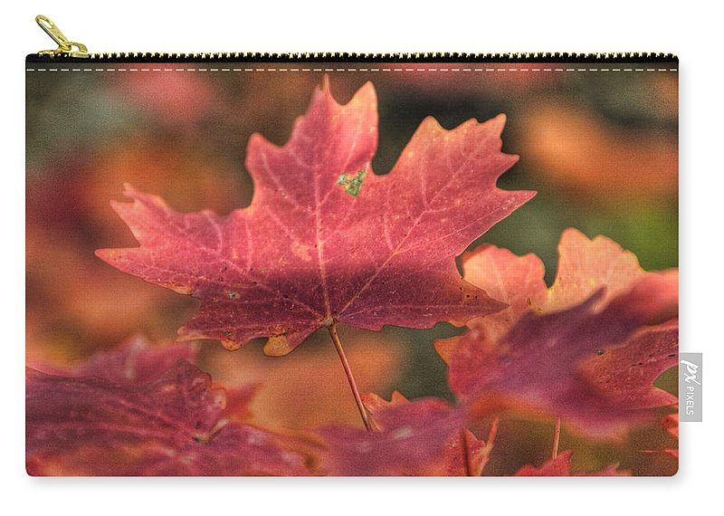 Maple Leaves Carry-all Pouch featuring the photograph A Red Fall by Saija Lehtonen
