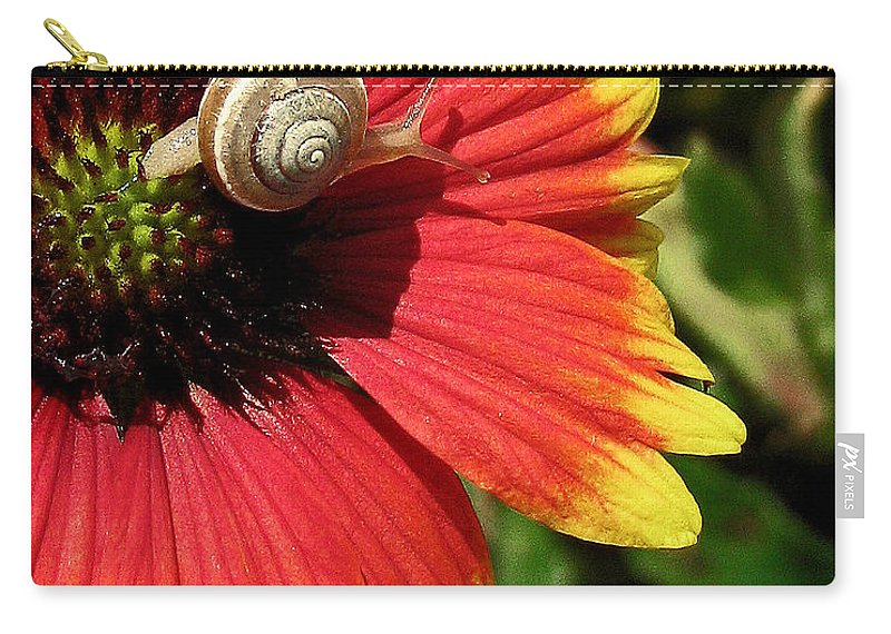 Nature Carry-all Pouch featuring the photograph A Snail's Pace by Peg Urban