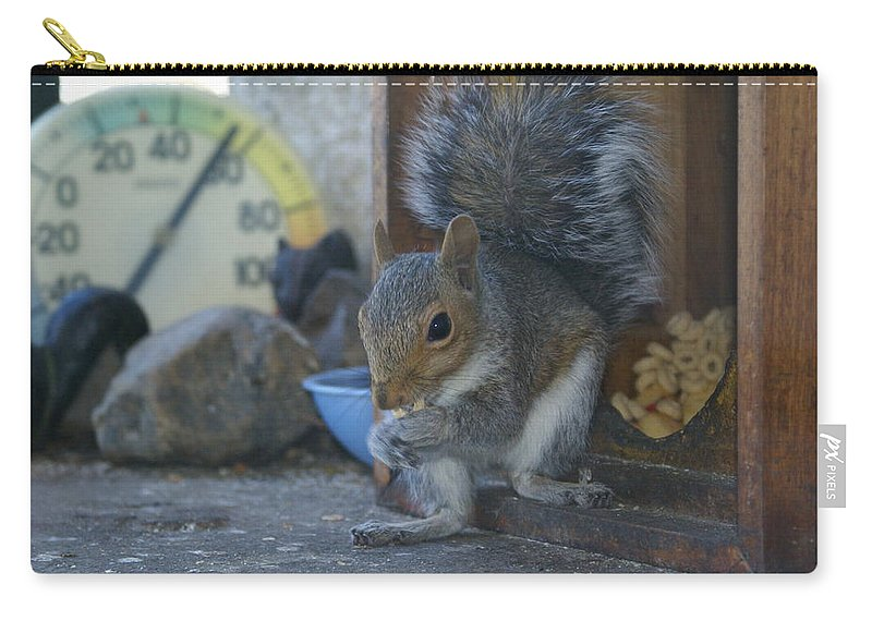 Squirrels Carry-all Pouch featuring the photograph A Squirrel In 55 Degree Weather by Ben Upham III