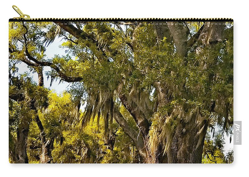 Evergreen Plantation Carry-all Pouch featuring the photograph A Stroll Through Time by Steve Harrington