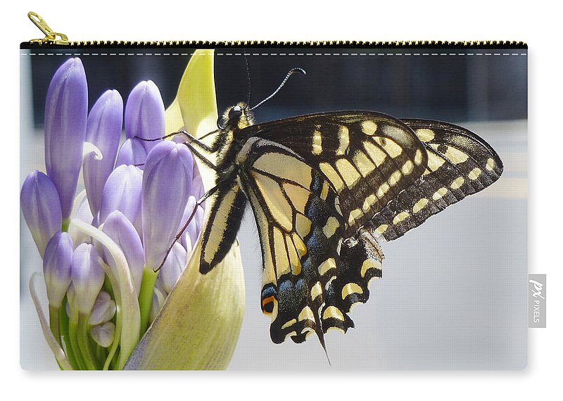 Butterfly Carry-all Pouch featuring the photograph A Swallowtail Butterfly by Xueling Zou