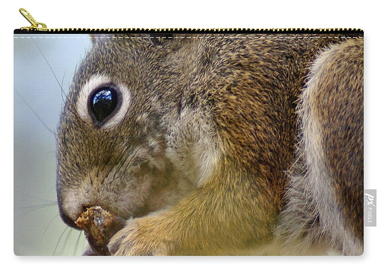 Squirrel Carry-all Pouch featuring the photograph A Tasty Cone Dessert by Ben Upham III
