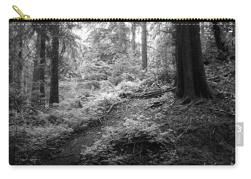 Path Carry-all Pouch featuring the photograph A Walk In The Woods by Kathleen Grace