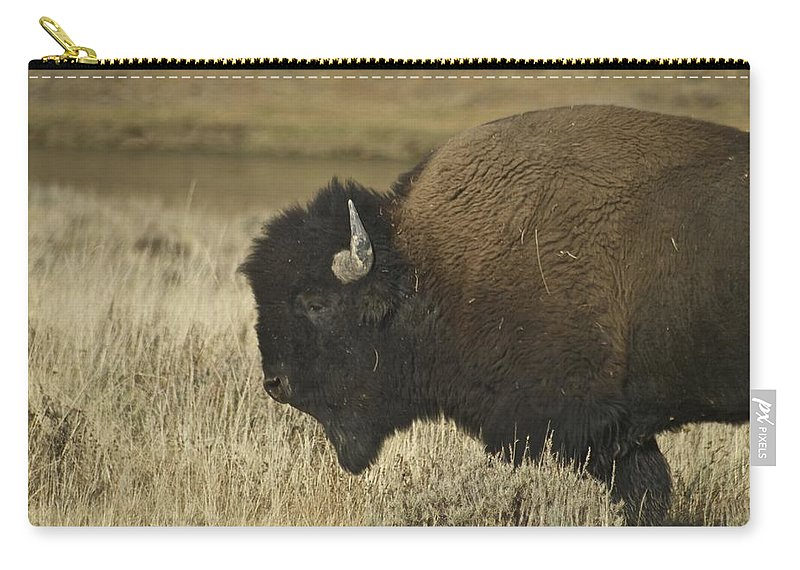 Bison Carry-all Pouch featuring the photograph A Yellowstone Bison 9615 by Michael Peychich