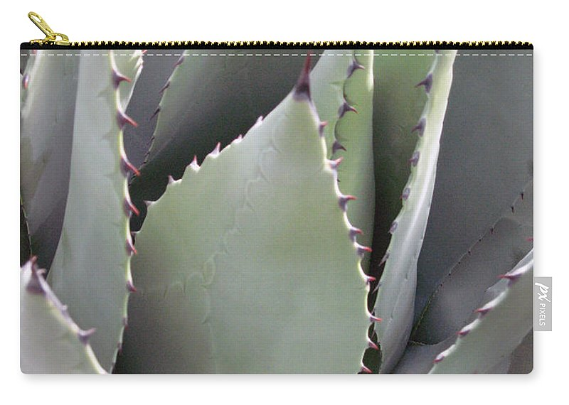 Agave Carry-all Pouch featuring the photograph Agave by Elizabeth Rose