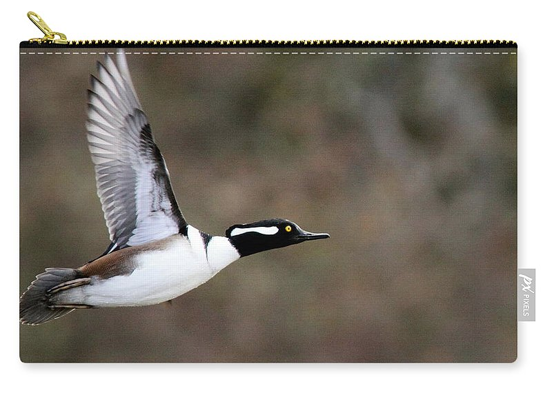Hooded Merganser Carry-all Pouch featuring the photograph Air Man by Travis Truelove
