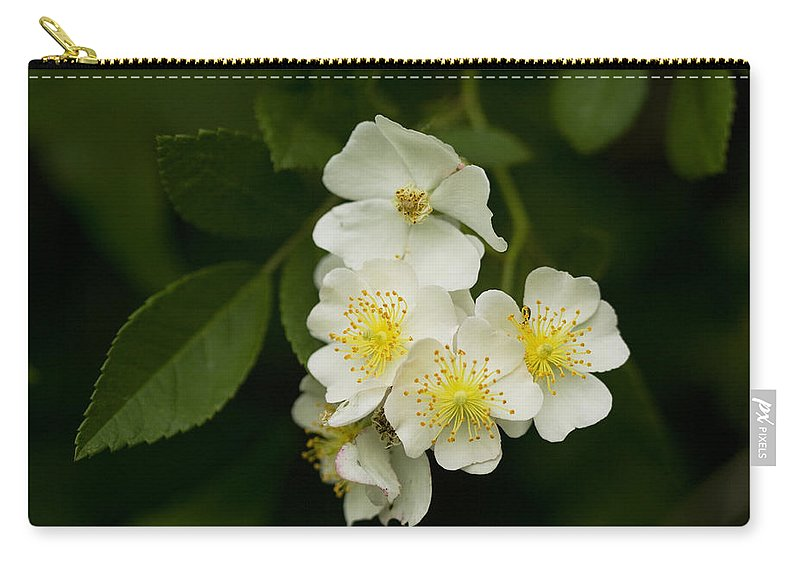 Rosa Multiflora Carry-all Pouch featuring the photograph Alabama Wildflower Roses - Rosa Multiflora by Kathy Clark