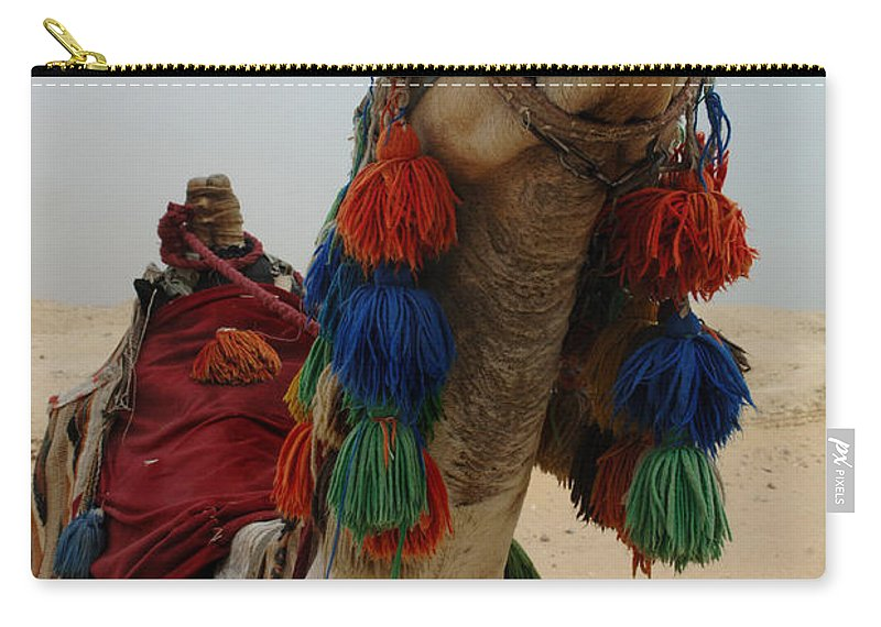Camel Carry-all Pouch featuring the photograph Camel Fashion by Bob Christopher
