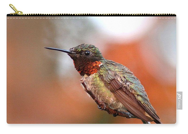Hummingbird Carry-all Pouch featuring the photograph All In Red by Travis Truelove