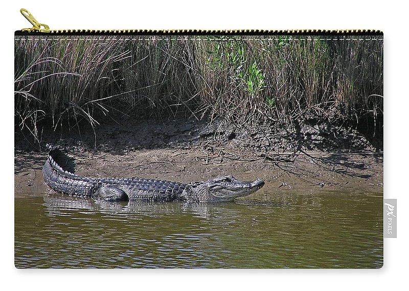 Alligator Carry-all Pouch featuring the photograph Alligator by Robert Brown