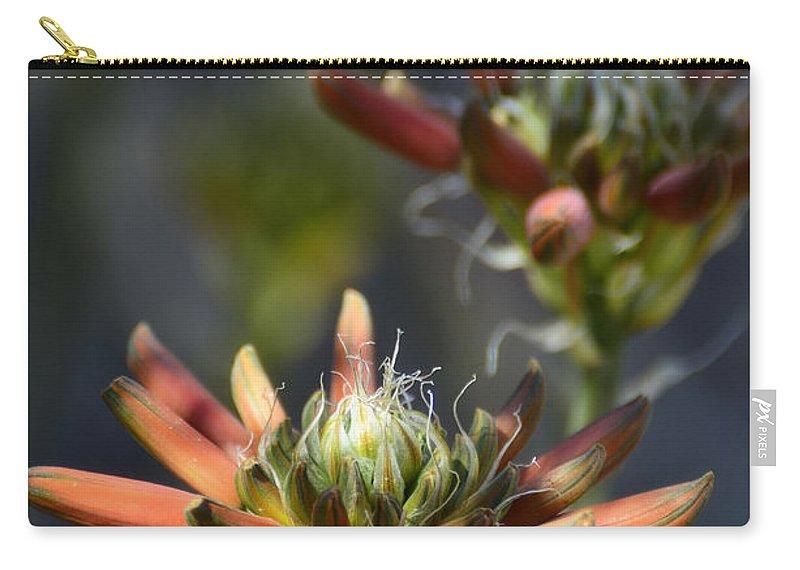 Aloe Vera Carry-all Pouch featuring the photograph Aloe Vera Blossoms by Saija Lehtonen