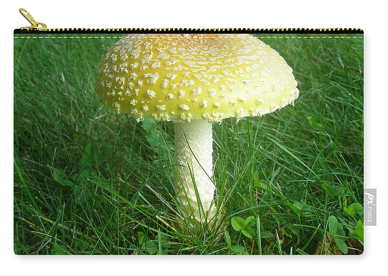 Mushroom Carry-all Pouch featuring the photograph Amanita Muscaria - Guessowii Mushroom by Mother Nature