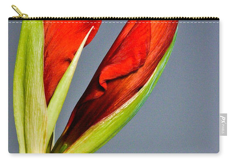 Flower Carry-all Pouch featuring the photograph Amarillius by Jean Noren