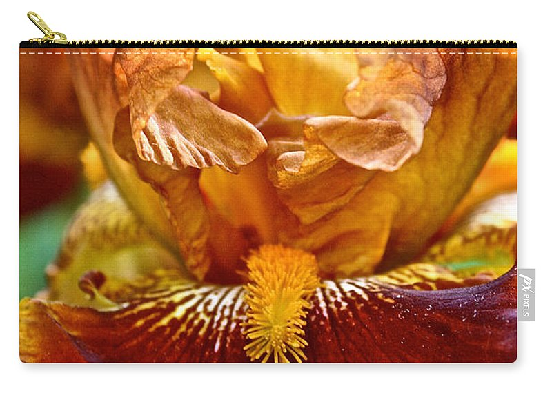 Plant Carry-all Pouch featuring the photograph Amber Stripes by Susan Herber