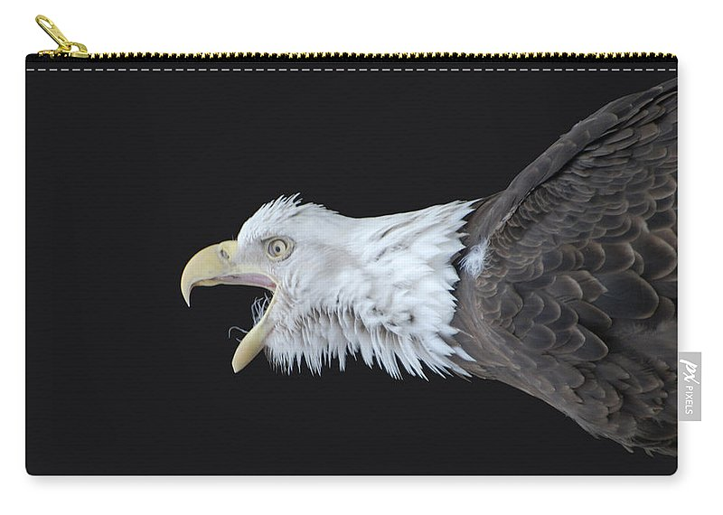 American Bald Eagle Carry-all Pouch featuring the photograph American Bald Eagle by Paul Ward