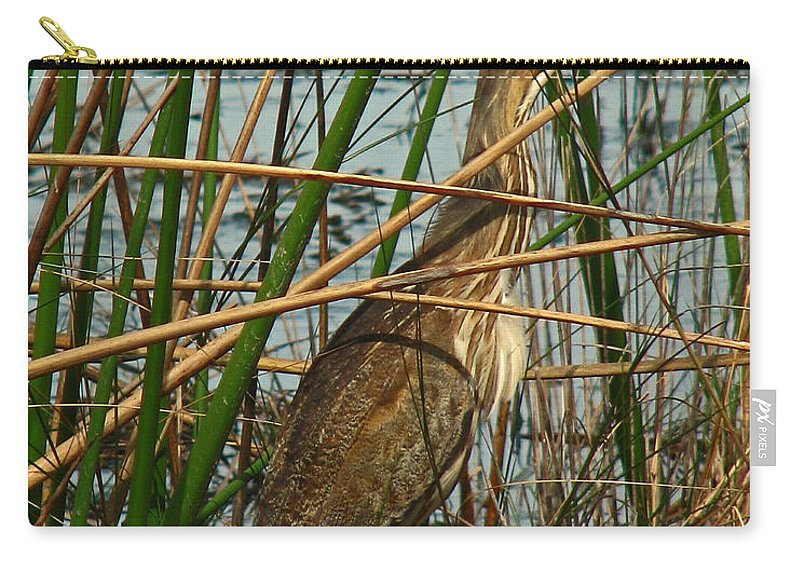 Nature Carry-all Pouch featuring the photograph American Bittern by Peg Urban