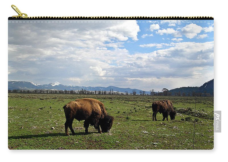 Bison Carry-all Pouch featuring the photograph American Buffalo 10 by Douglas Barnett