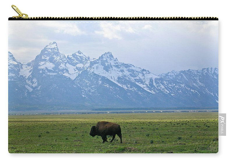 Bison Carry-all Pouch featuring the photograph American Buffalo 14 by Douglas Barnett