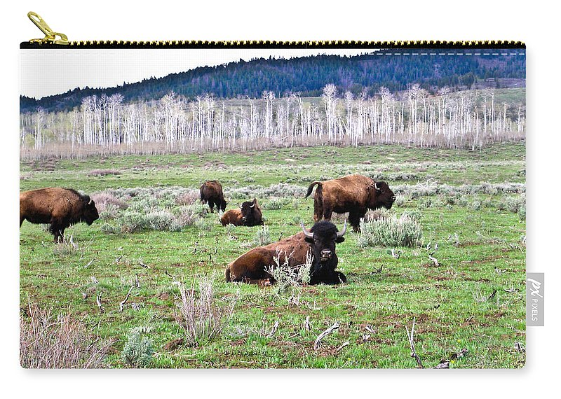 Bison Carry-all Pouch featuring the photograph American Buffalo 16 by Douglas Barnett