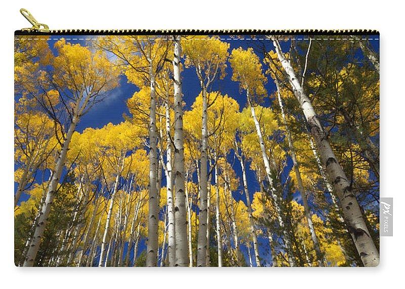 Autumn Carry-all Pouch featuring the photograph An Arizona Autumn by Saija Lehtonen