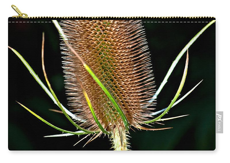 Weed Carry-all Pouch featuring the photograph Anatomy Of A Weed by Steve Harrington