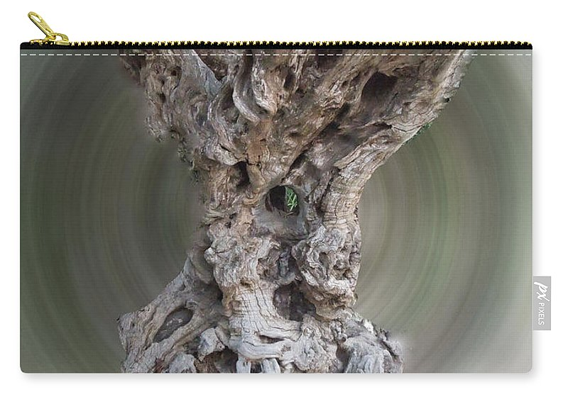 Colette Carry-all Pouch featuring the photograph Ancient Old Olive Tree by Colette V Hera Guggenheim