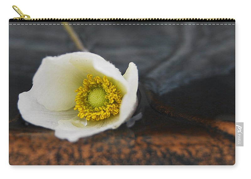 Animone Carry-all Pouch featuring the photograph Anemone Alone by The Artist Project