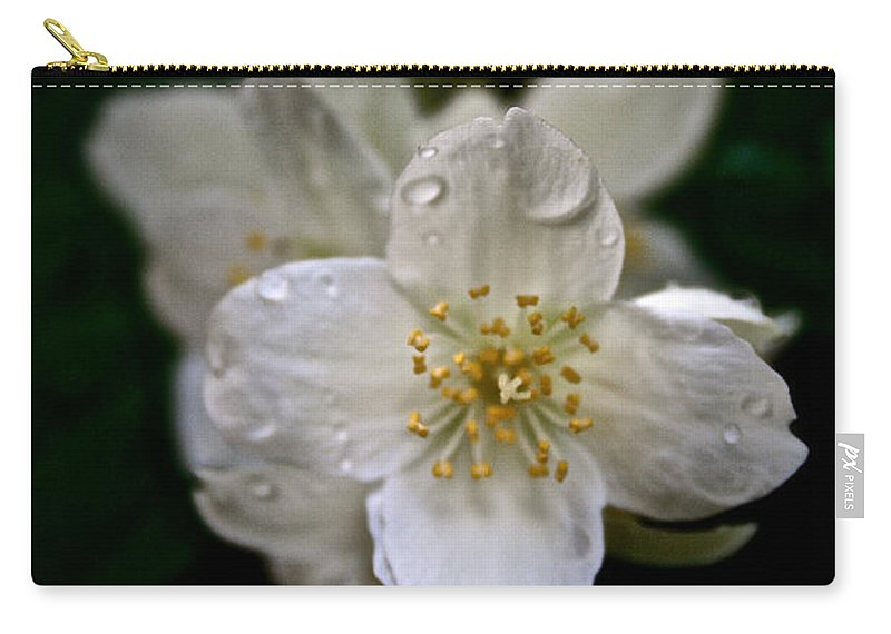 Outdoors Carry-all Pouch featuring the photograph Angel Teardrops by Susan Herber