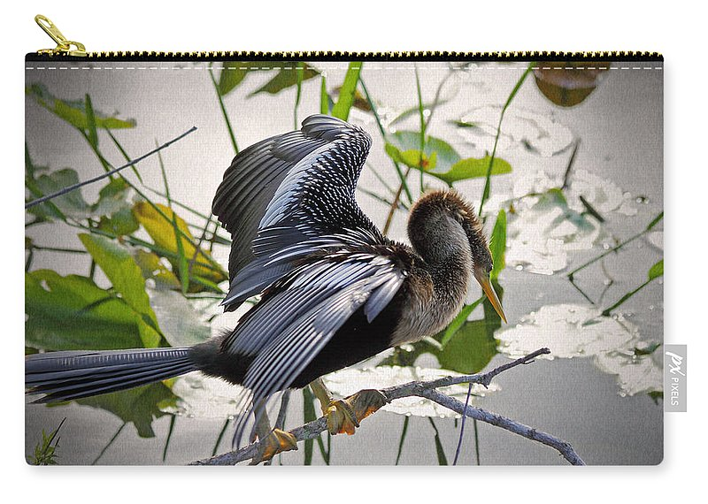 Anhinga Carry-all Pouch featuring the photograph Anhinga by Rudy Umans
