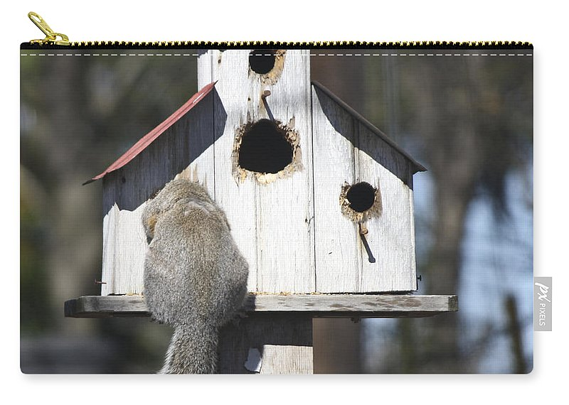 Squirrel Carry-all Pouch featuring the photograph Anyone Home by Teresa Mucha