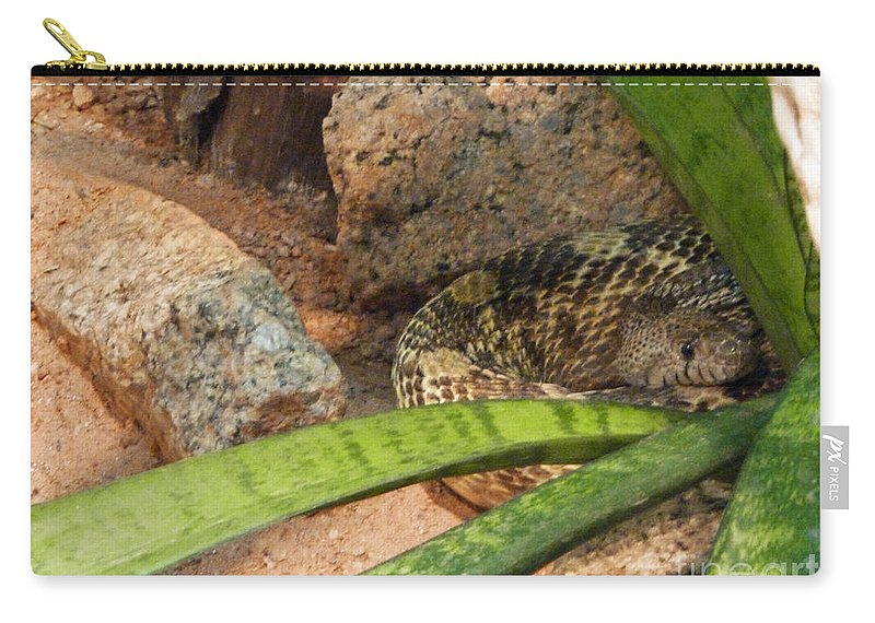 Arizona Rattler Carry-all Pouch featuring the photograph Arizona Rattler by Methune Hively