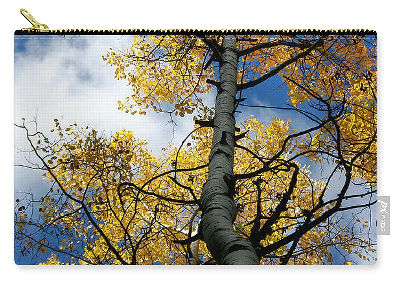 Photograph Carry-all Pouch featuring the photograph Aspen Gold by Vicki Pelham