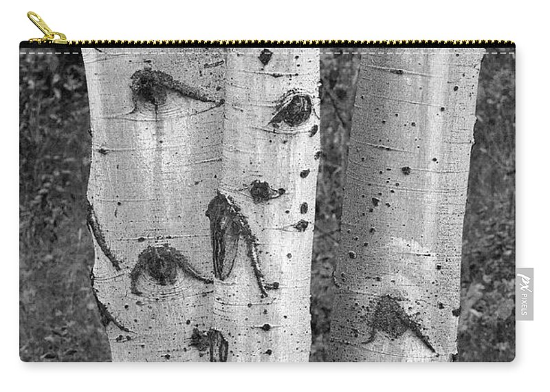 Grand Teton Carry-all Pouch featuring the photograph Aspen Trees by Sandra Bronstein