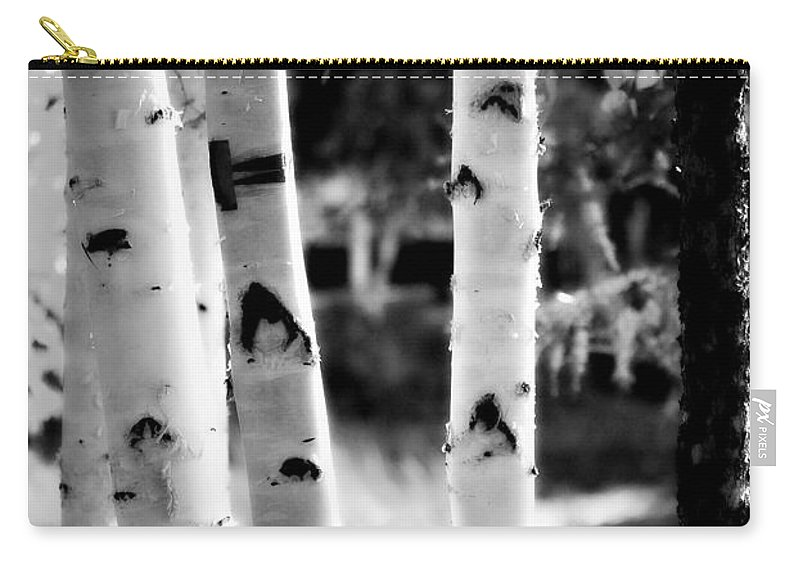 Chena Carry-all Pouch featuring the photograph Aspens by Kathy Sampson
